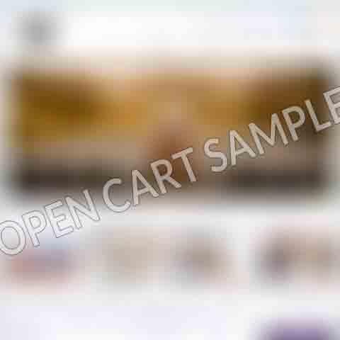 Open-Cart-2