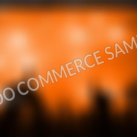 Woo-Commerce-2